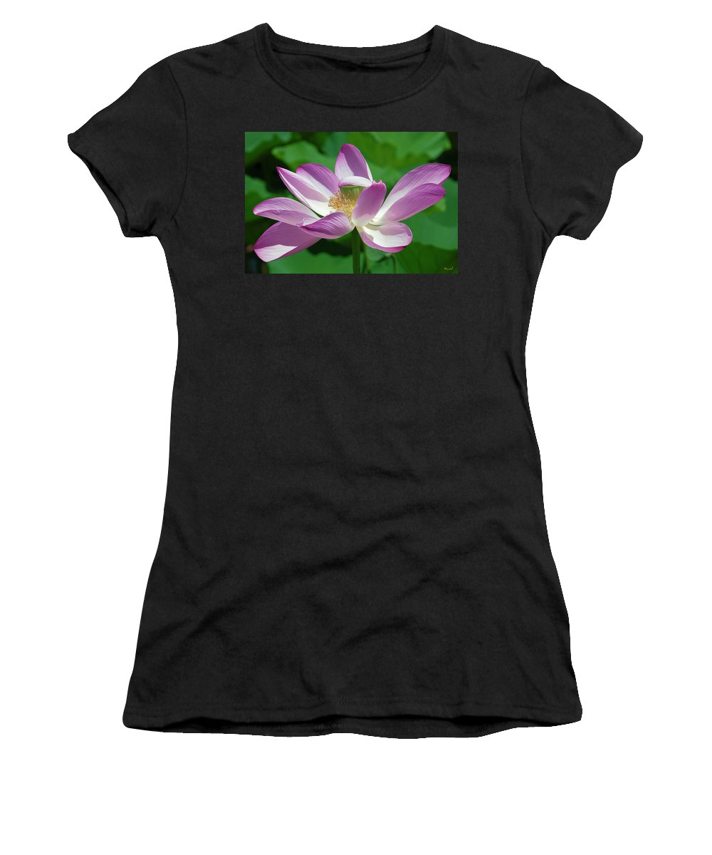Lotus Women's T-Shirt featuring the photograph Lotus--center Of Being--protective Covering I Dl0087 by Gerry Gantt