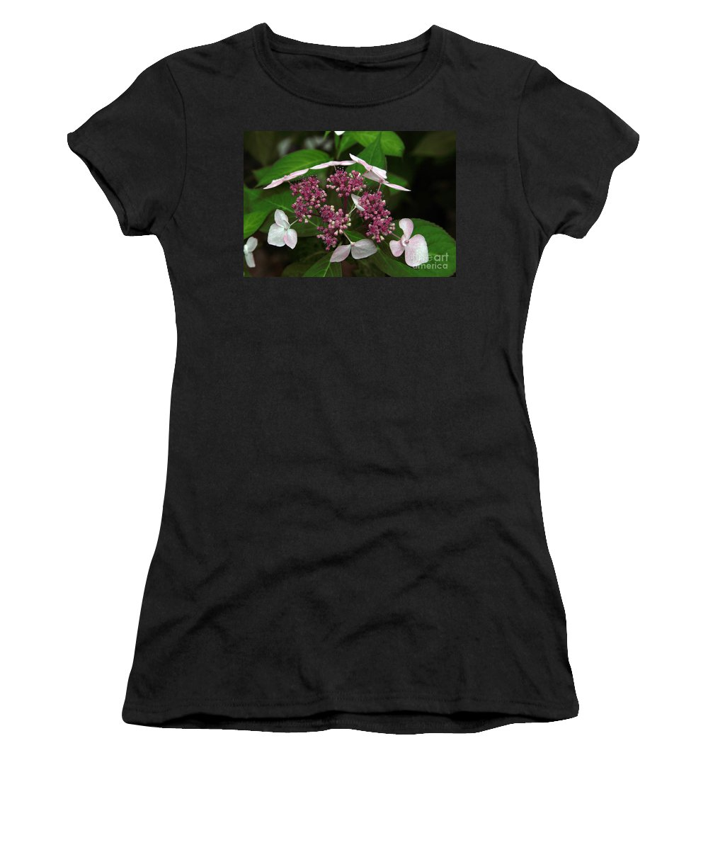Hydrangea Women's T-Shirt (Athletic Fit) featuring the photograph Lovely by Amanda Barcon