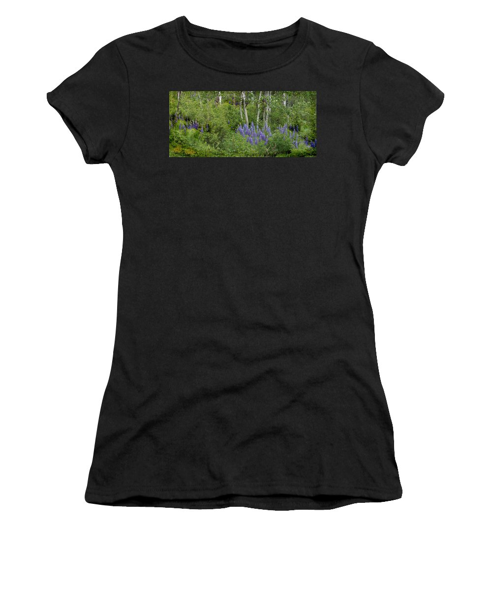 Aspen Women's T-Shirt (Athletic Fit) featuring the photograph Lupine And Aspens by Heather Coen
