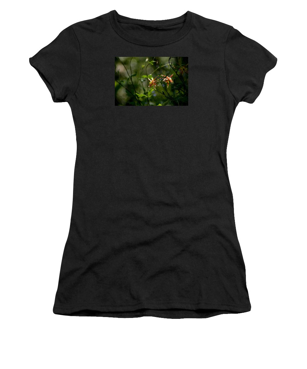 Wild Columbine Women's T-Shirt (Athletic Fit) featuring the photograph Magical Forest by Living Color Photography Lorraine Lynch