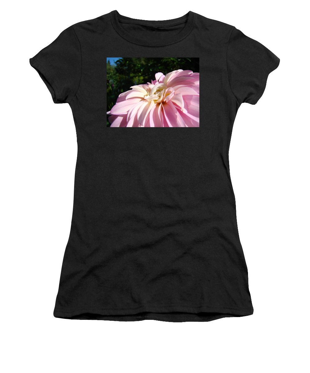 Dahlia Women's T-Shirt (Athletic Fit) featuring the photograph Master Gardener Pink Dahlia Flower Garden Art Prints Canvas Baslee Troutman by Baslee Troutman
