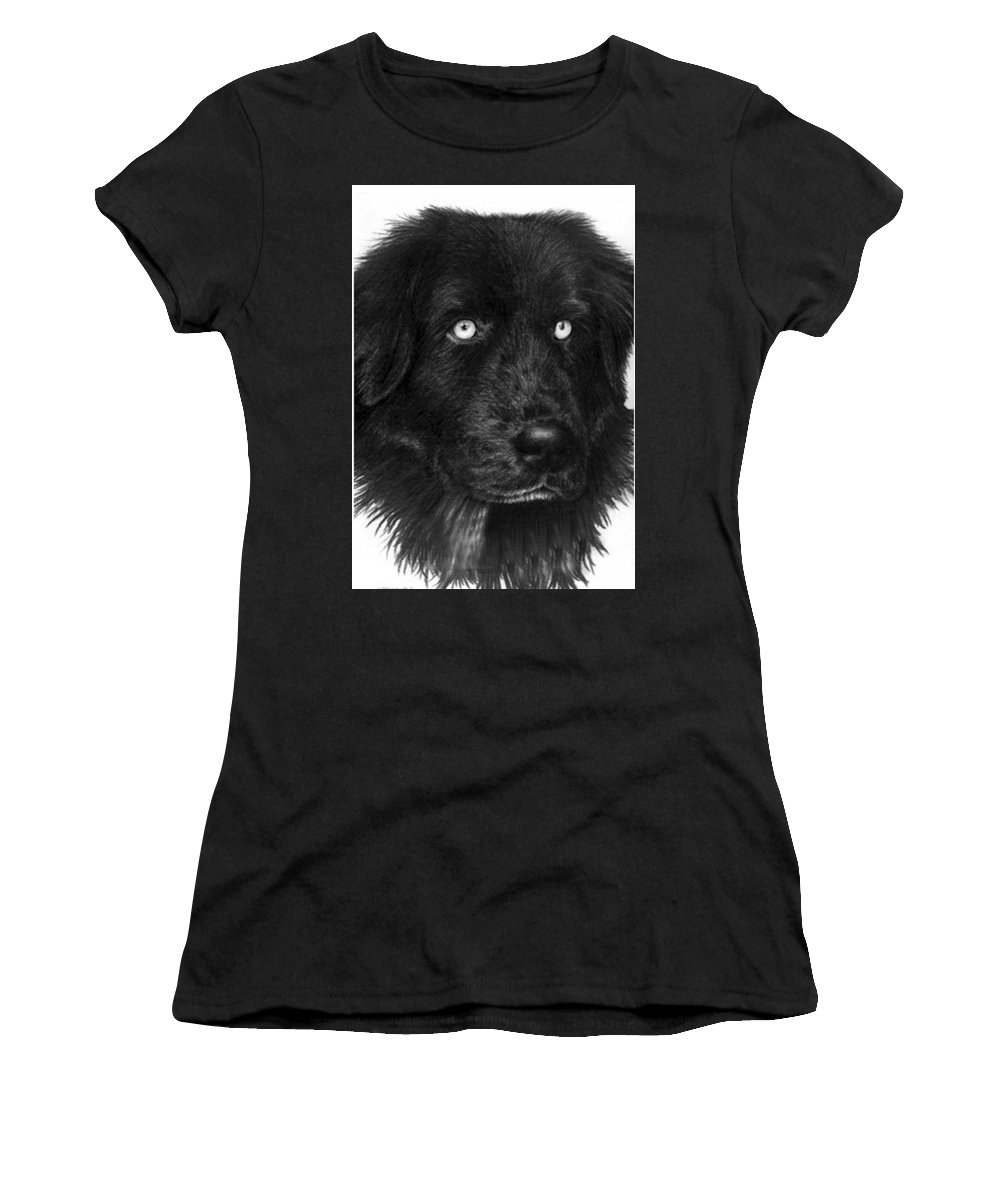 Dog Women's T-Shirt featuring the drawing Merlin by Rachel Christine Nowicki