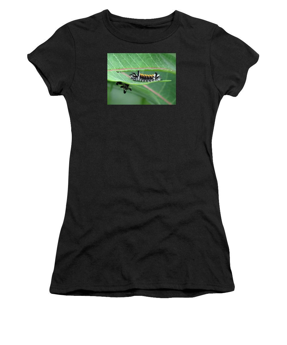 Milkweed Tussock Moth Caterpillar Women's T-Shirt (Athletic Fit) featuring the photograph Milkweed Tussock Moth Caterpillar by Cynthia Frames