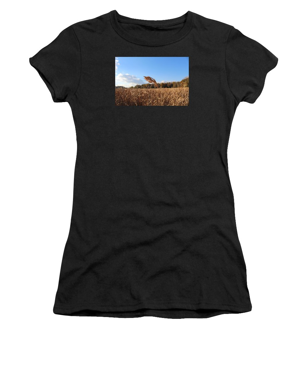 Grass Women's T-Shirt (Athletic Fit) featuring the photograph Minnesota Lake Grass by Brent Baum