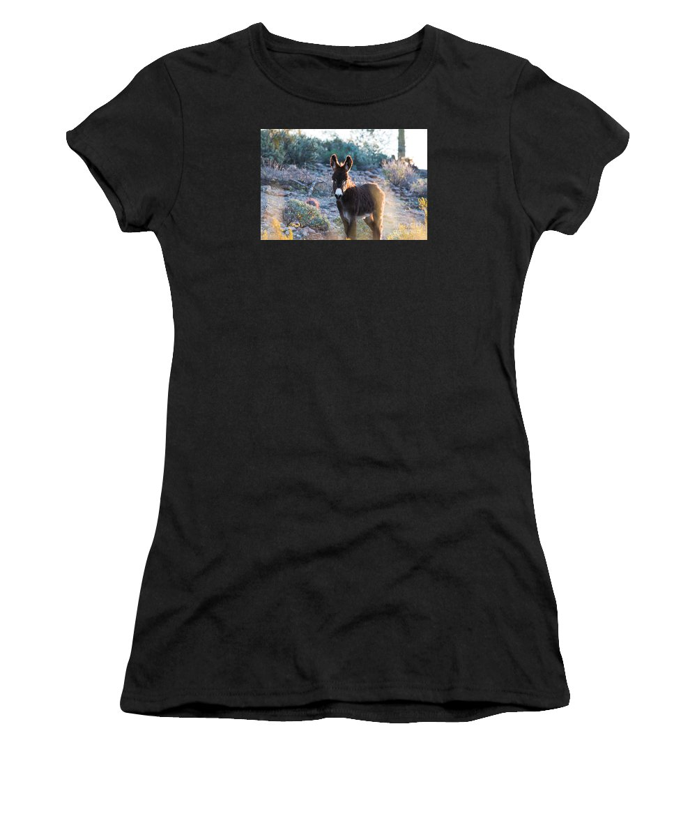 Wild Horse Women's T-Shirt (Athletic Fit) featuring the photograph Morning Curiosity by Sally E Wright