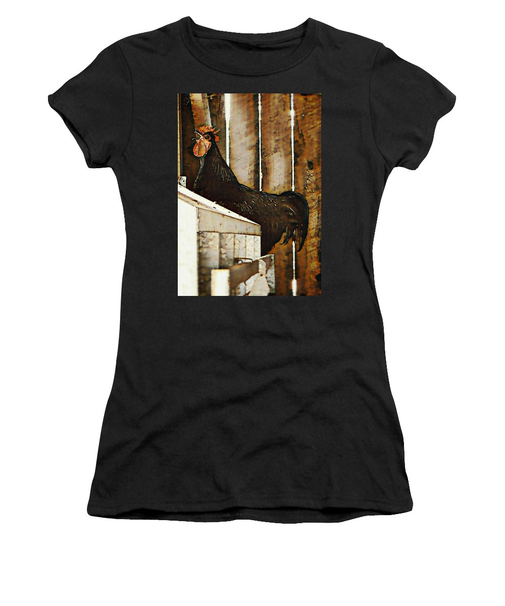 Rooster Women's T-Shirt (Athletic Fit) featuring the photograph Morning Holler by Jenn Teel