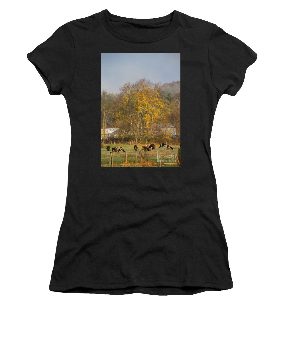 Animals Women's T-Shirt (Athletic Fit) featuring the photograph Morning Light by Kathleen Rinker