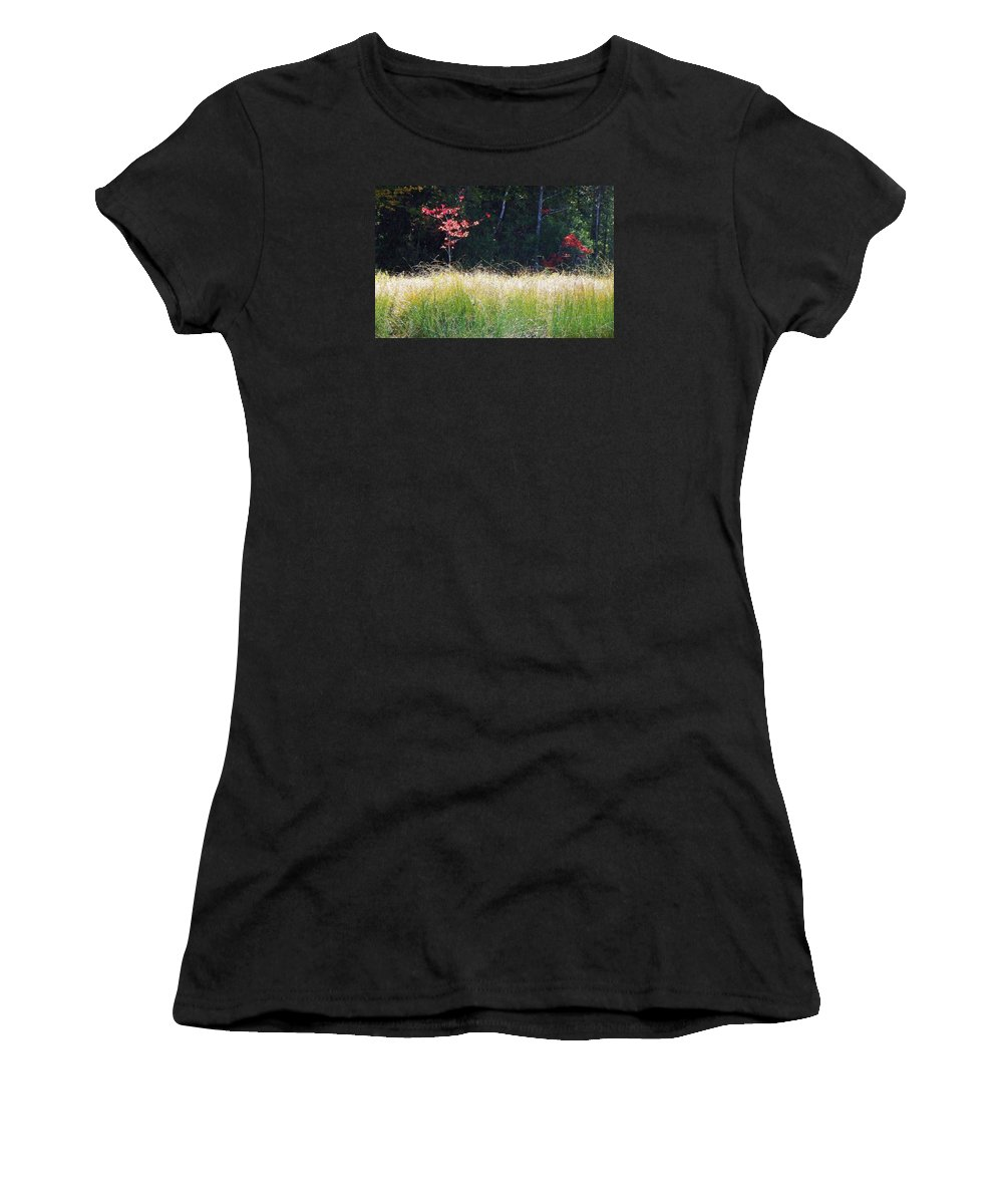 Morning Melody On Hopkins Stream Women's T-Shirt (Athletic Fit) featuring the photograph Morning Melody On Hopkins Stream by Joy Nichols
