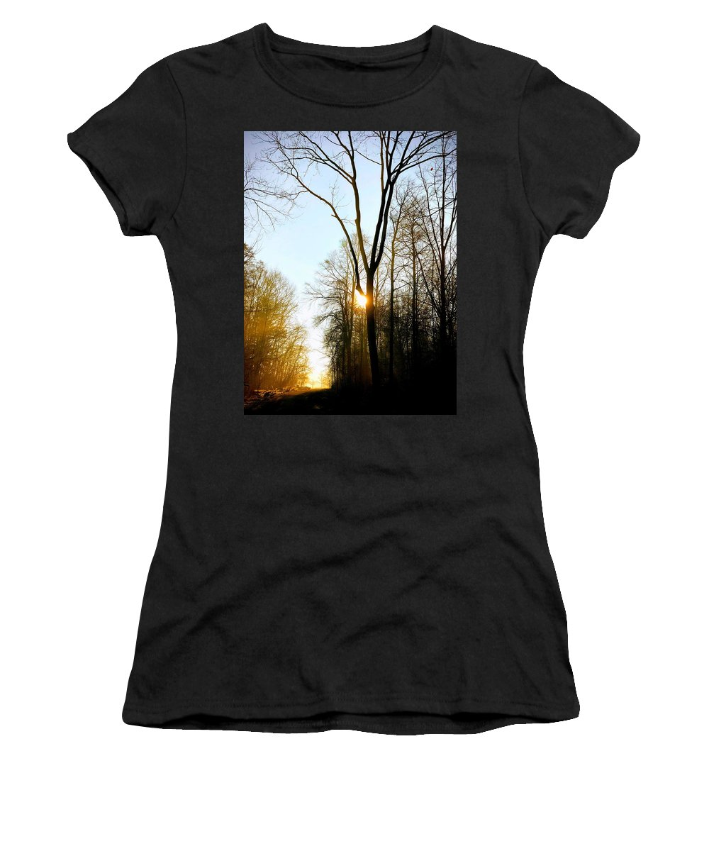 Tree Women's T-Shirt featuring the photograph Morning mood in the forest by Matthias Hauser