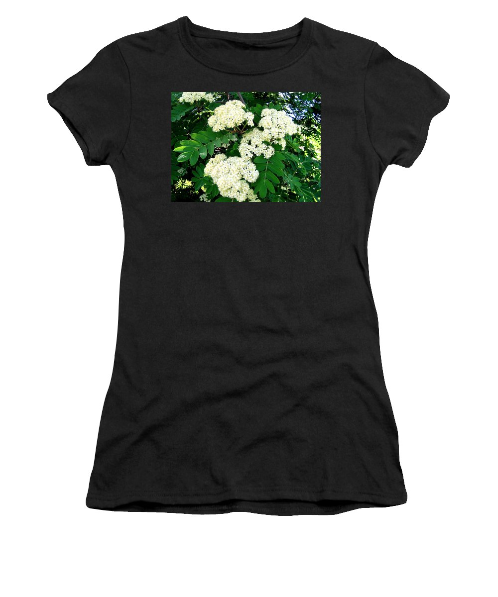 Mountain Ash Women's T-Shirt (Athletic Fit) featuring the photograph Mountain Ash Blossoms by Will Borden