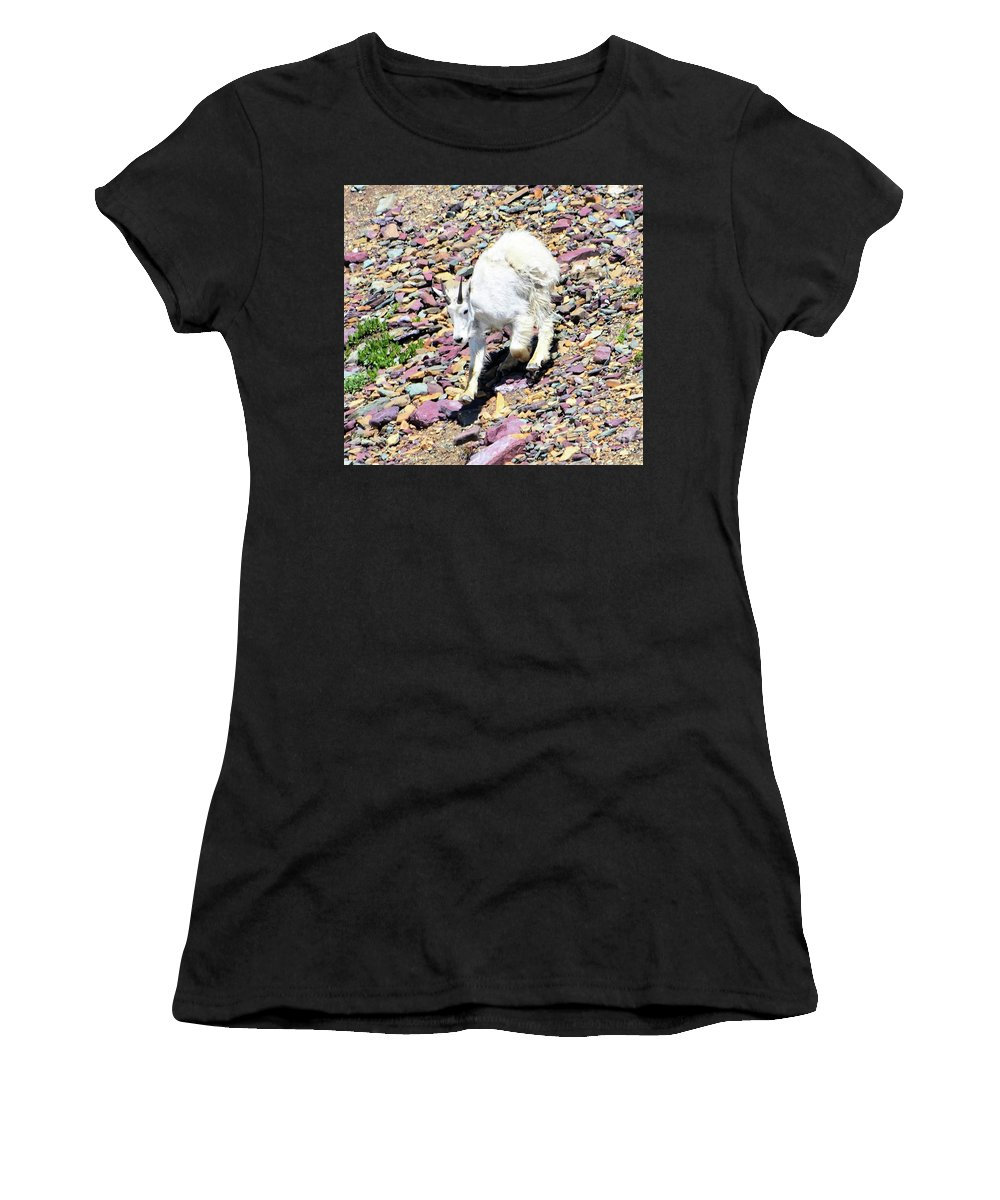 Goat Women's T-Shirt (Athletic Fit) featuring the photograph Mountain Goat3 by Hughes Country Roads Photography