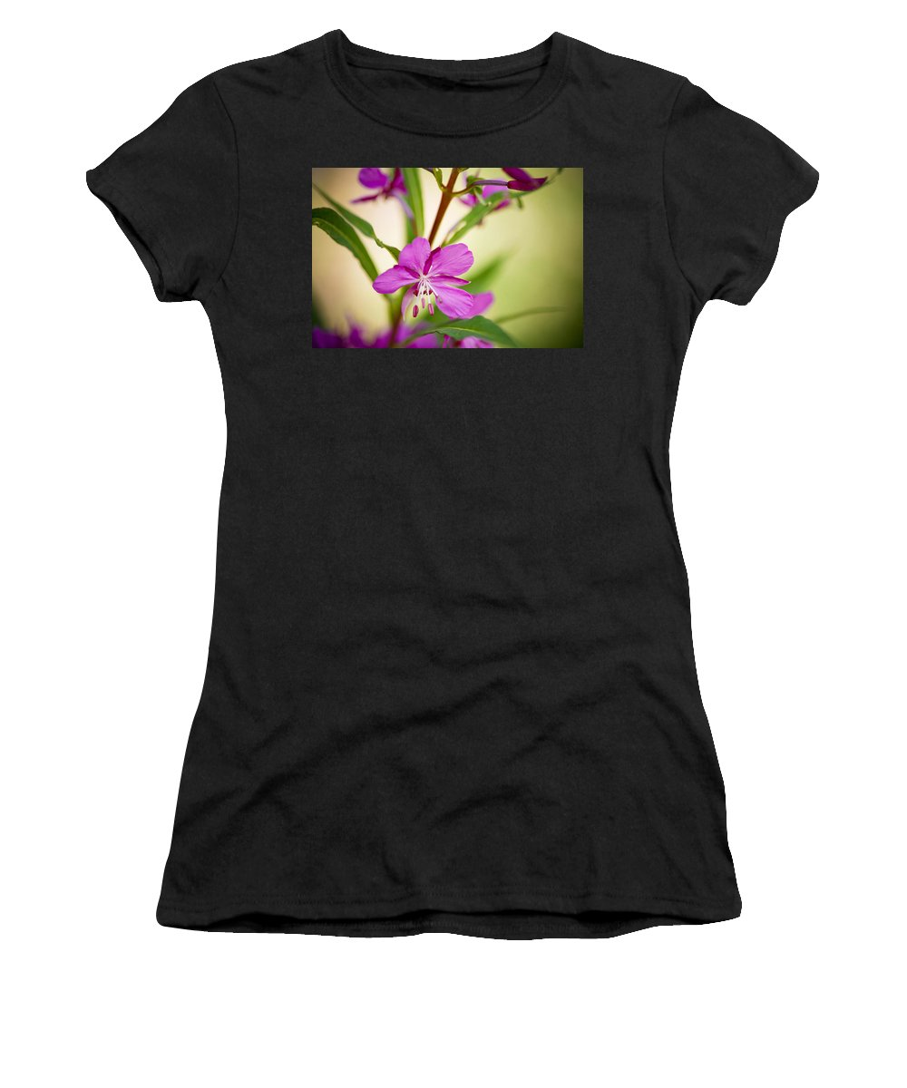 Wildflower Women's T-Shirt (Athletic Fit) featuring the photograph Mountain Wildflower In Summer by Marilyn Hunt