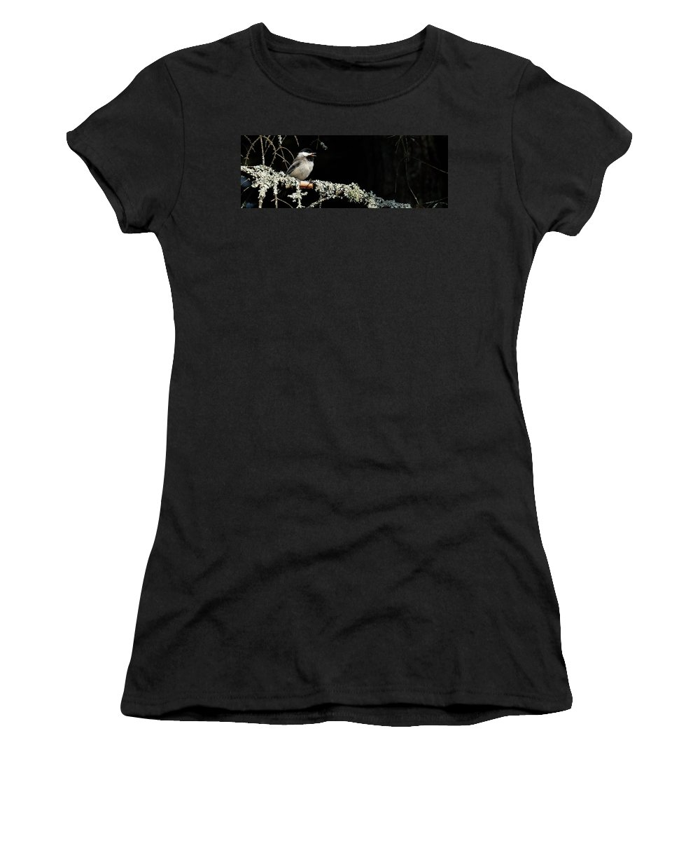 Chickadee Women's T-Shirt featuring the photograph Nature Up Close by Peggy McDonald