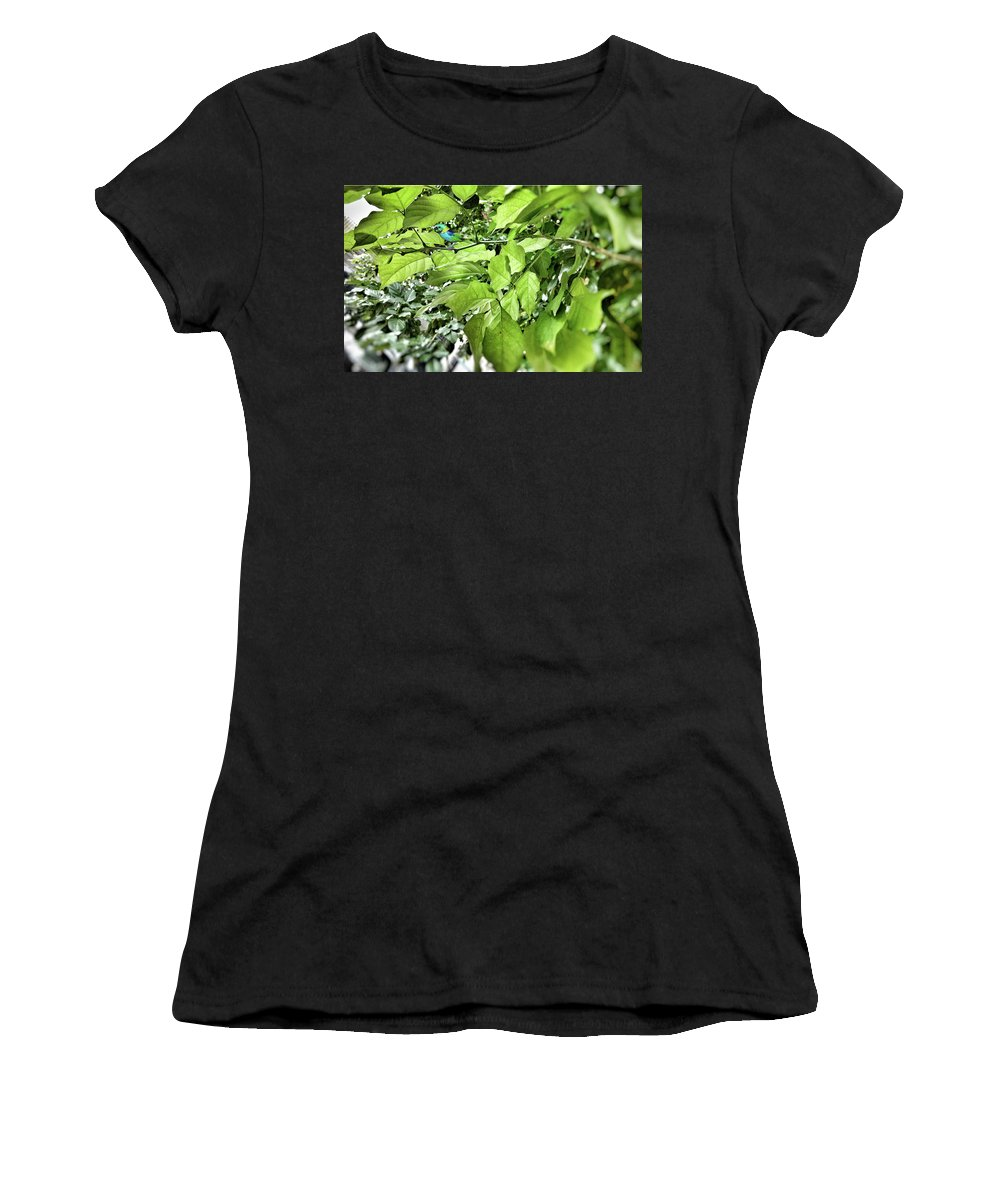 Women's T-Shirt featuring the photograph Nature's Beauty by Jyoti Anand