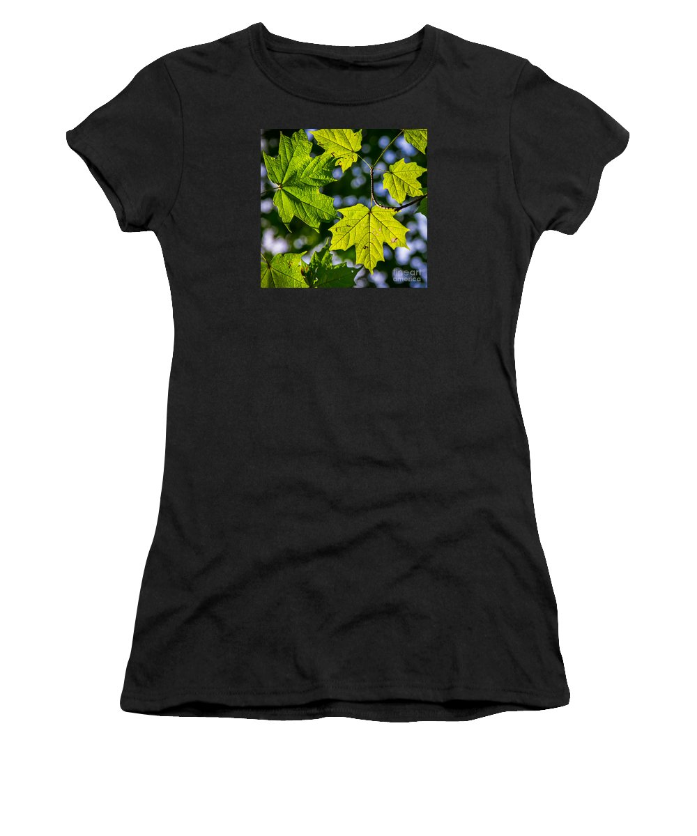Fall Women's T-Shirt (Athletic Fit) featuring the photograph Natures Going Green Design by Michael Arend