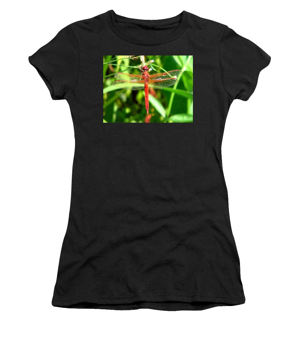 Dragonfly Women's T-Shirt (Athletic Fit) featuring the photograph Neon Skimmer 1 by J M Farris Photography
