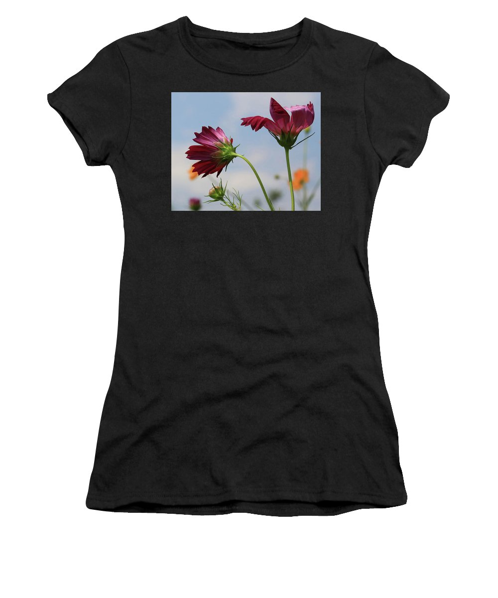 New Jersey Women's T-Shirt featuring the photograph New Jersey Wildflowers In The Wind by Paul Ranky