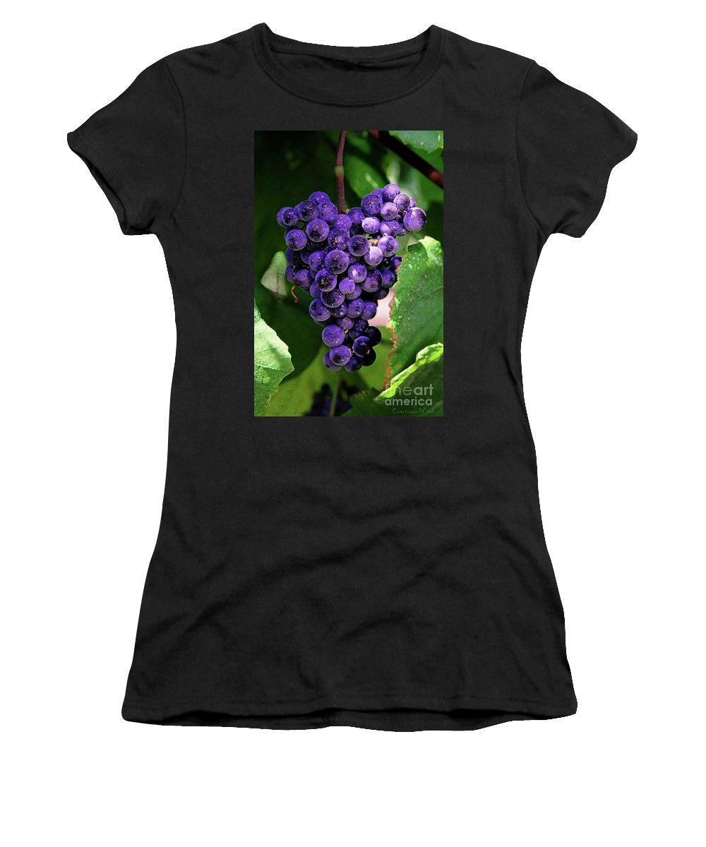 Grapes Art Women's T-Shirt (Athletic Fit) featuring the painting New Wine by Constance Woods
