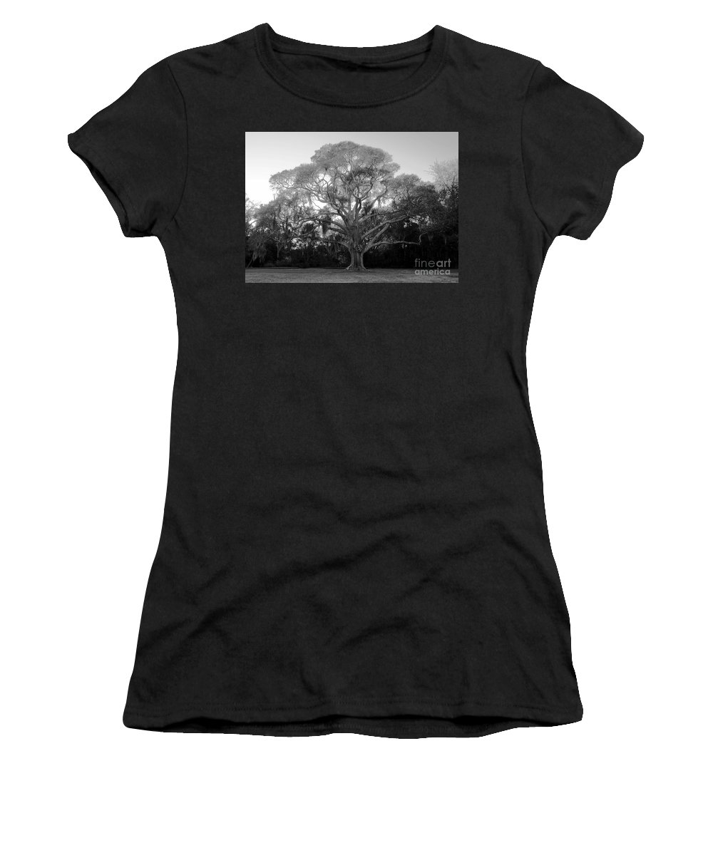 Oak Tree Women's T-Shirt (Athletic Fit) featuring the photograph Oak Tree by David Lee Thompson