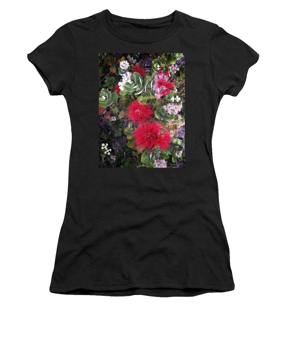 Hawaii Women's T-Shirt featuring the photograph Ohia Lehua by DeWaine Tollefsrud