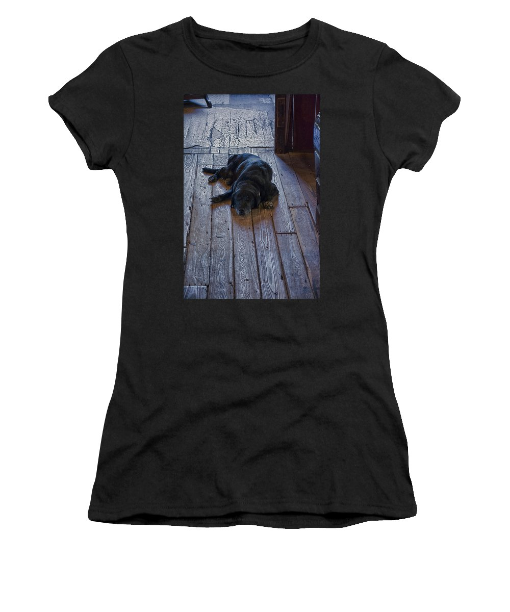 Old Dog Old Floor Women's T-Shirt (Athletic Fit) featuring the photograph Old Dog Old Floor by Don Columbus