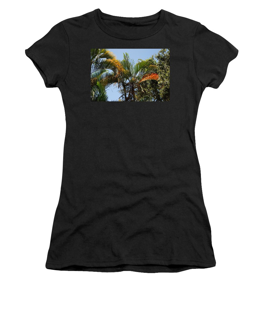 Palms Women's T-Shirt (Athletic Fit) featuring the photograph Orange Trees by Rob Hans