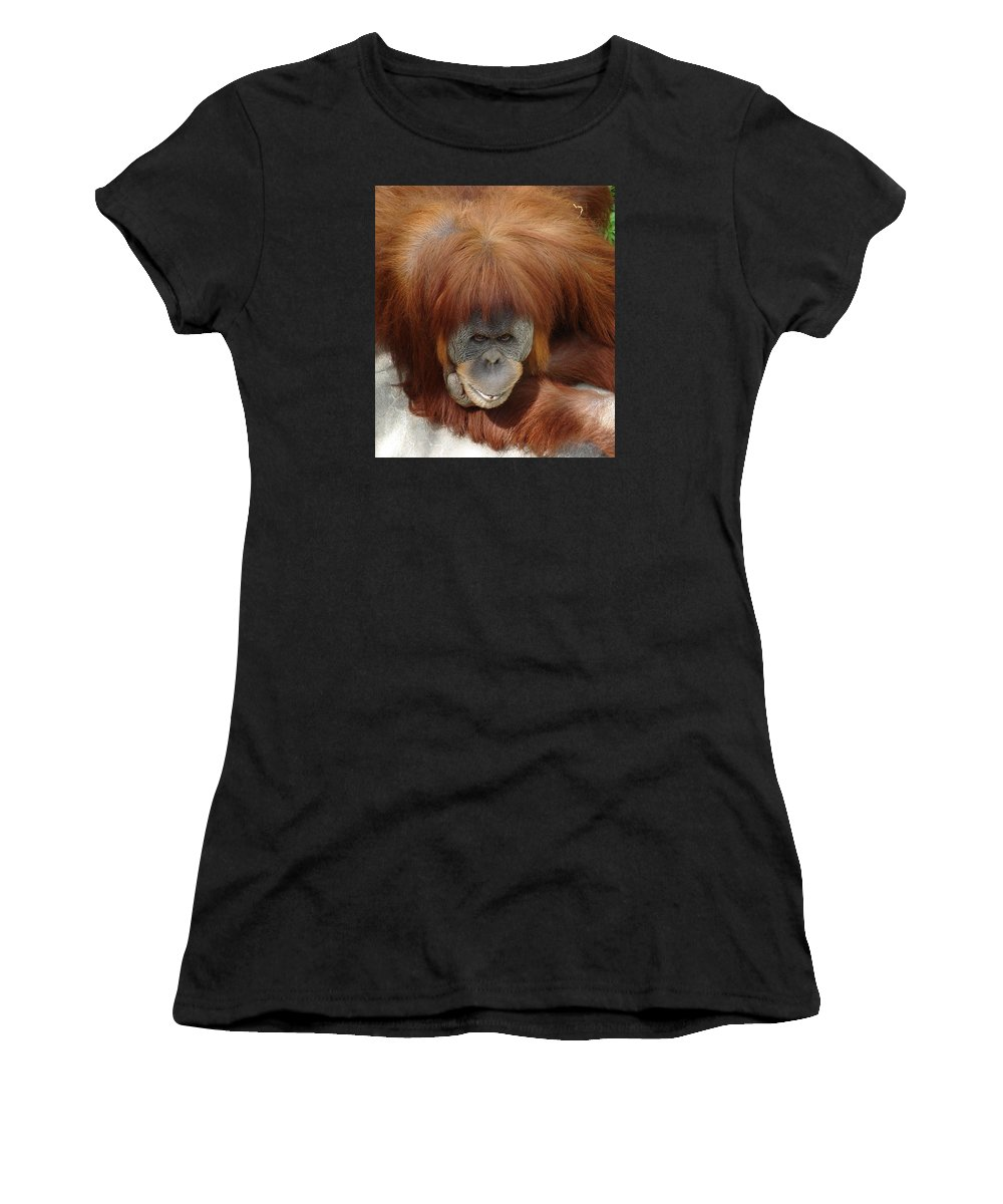 Red Ape Eyes Women's T-Shirt (Athletic Fit) featuring the photograph Orangutan by Luciana Seymour