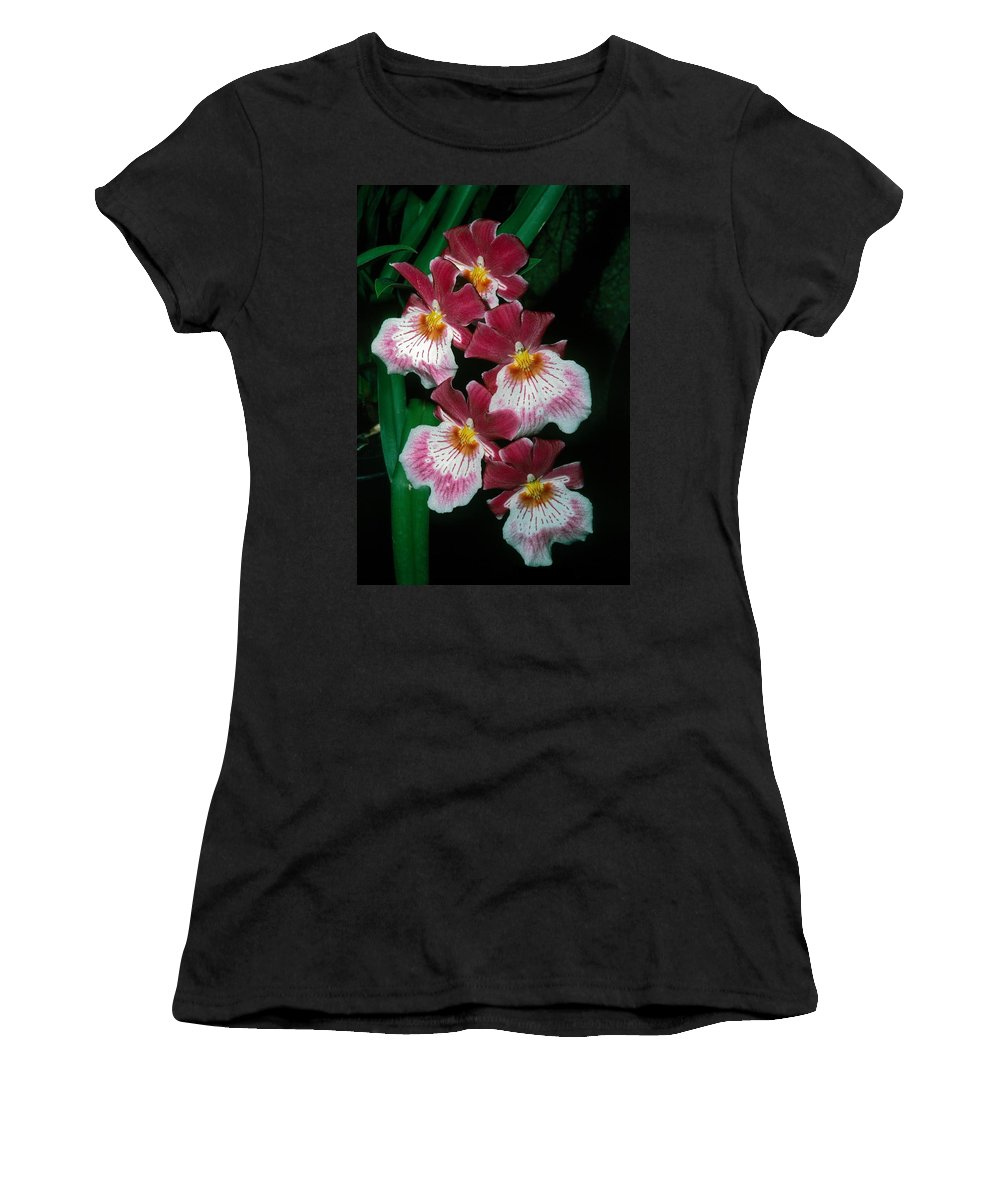 Orchid Women's T-Shirt featuring the photograph Orchid Group by Sally Weigand