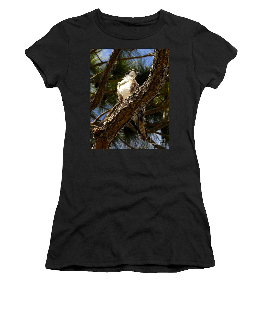 Osprey Women's T-Shirt (Athletic Fit) featuring the photograph Osprey Hunting by David Lee Thompson