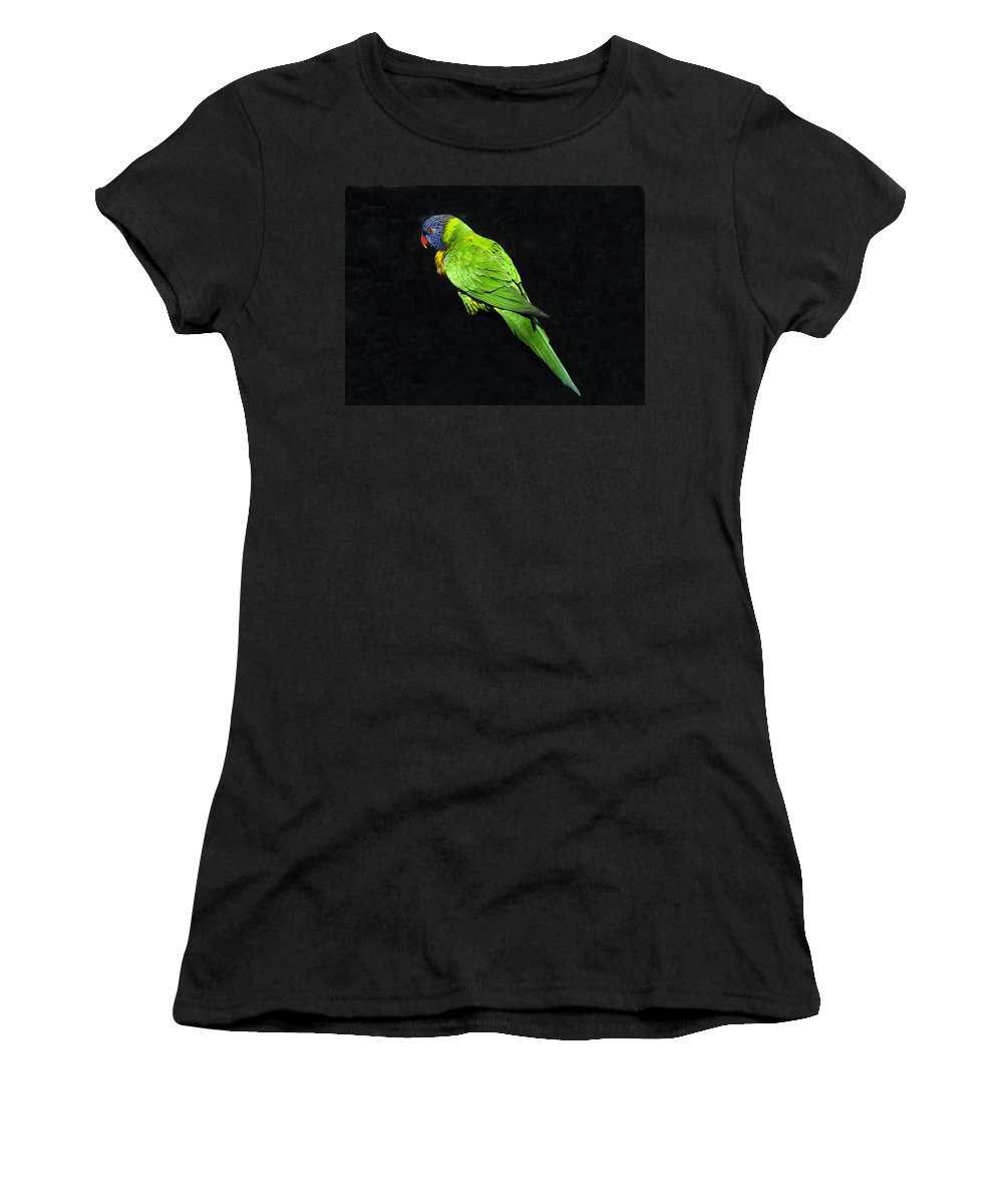 Parrot Women's T-Shirt (Athletic Fit) featuring the photograph Parrot In Black by David Lee Thompson