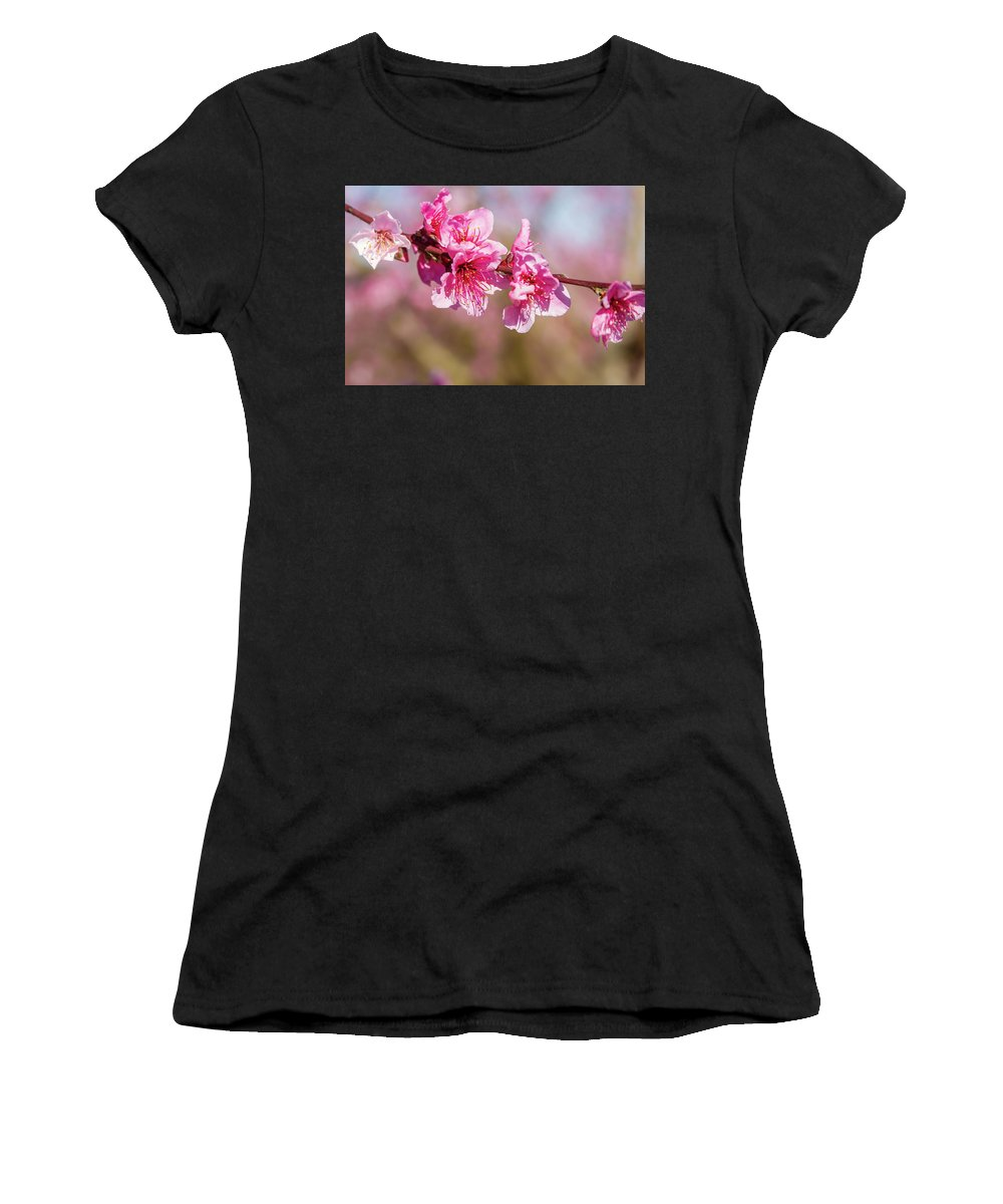 Peachblossom Women's T-Shirt (Athletic Fit) featuring the photograph Peach Blossom by Menachem Ganon