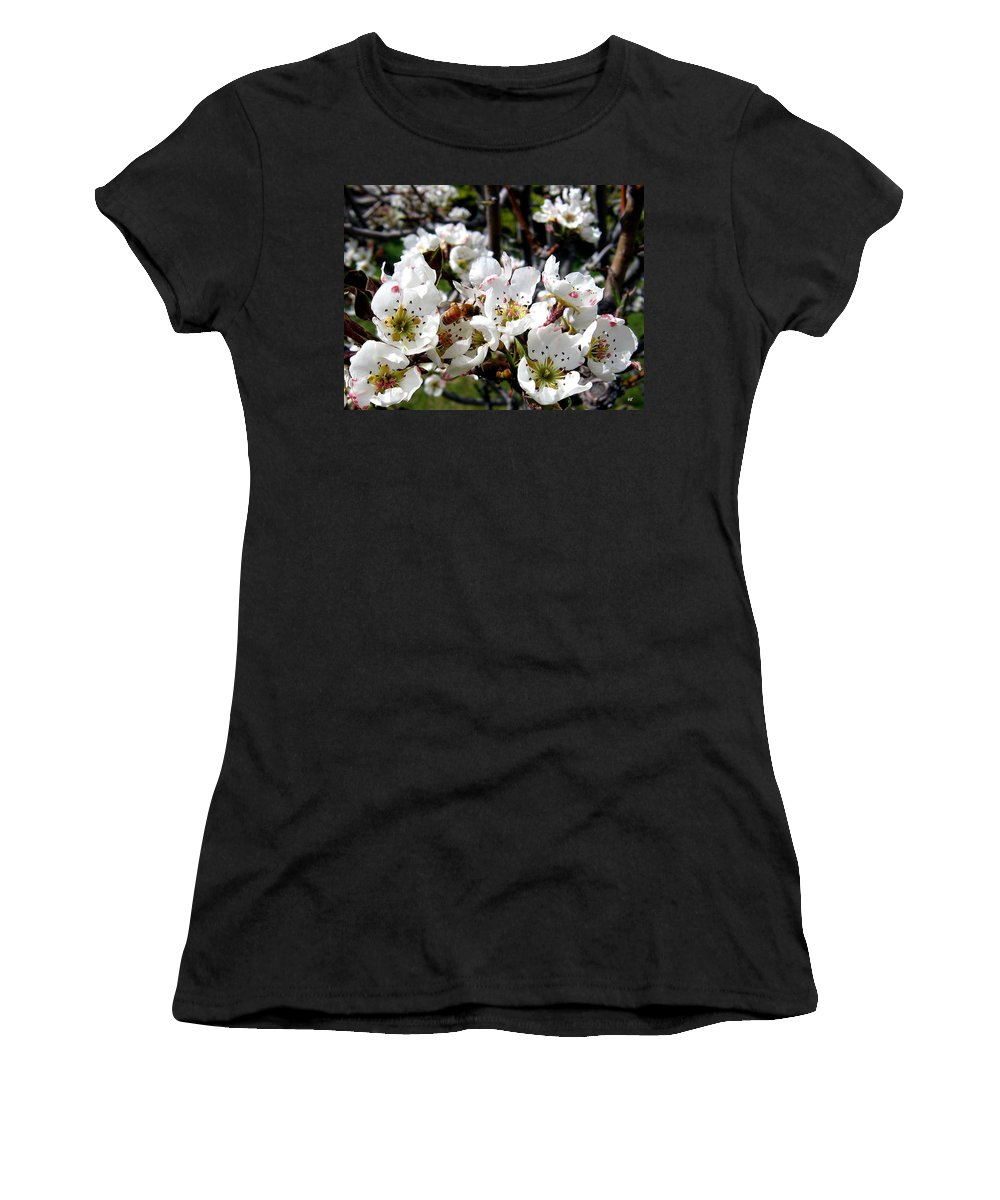 Blossoms Women's T-Shirt (Athletic Fit) featuring the photograph Pear Blossoms And Bee by Will Borden
