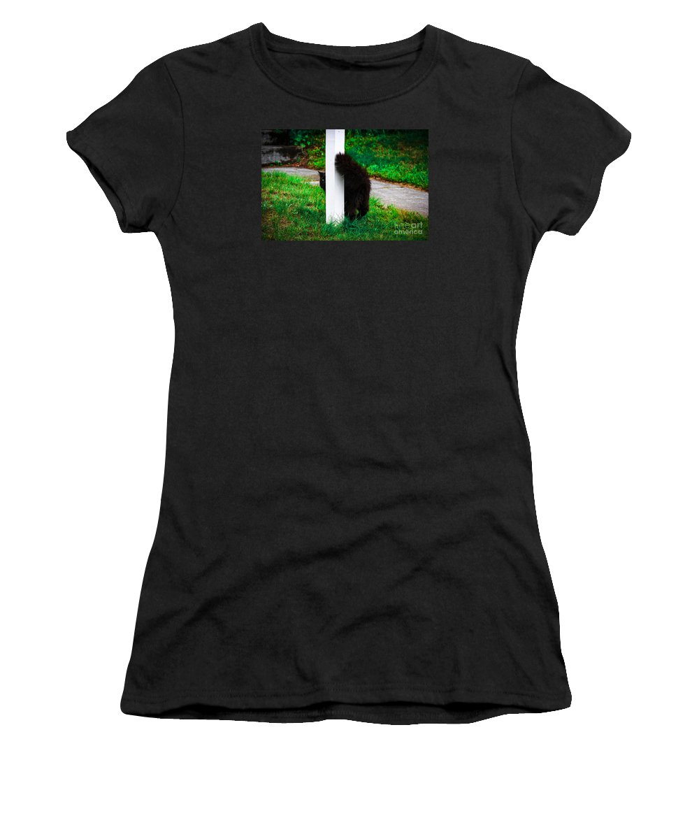 Cat Women's T-Shirt (Athletic Fit) featuring the photograph Peeking Kitty by Marina McLain