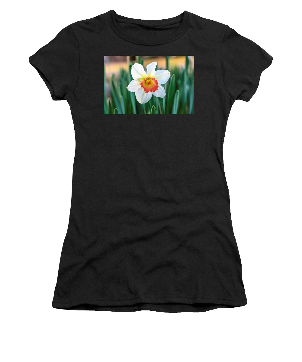 Daffodil Women's T-Shirt featuring the photograph Pink Cup Solo Daffodil by Keith Smith