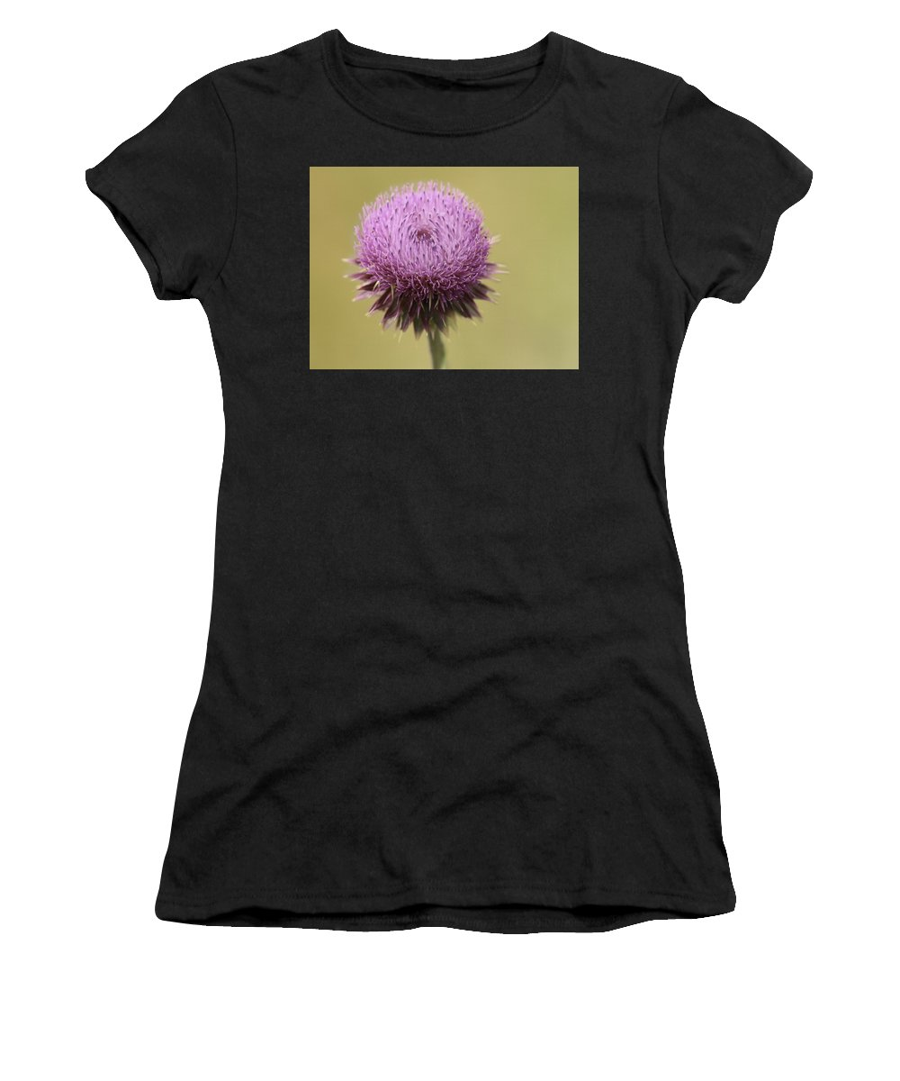 Thistle Women's T-Shirt featuring the photograph Pink Thistle by Lorraine Baum