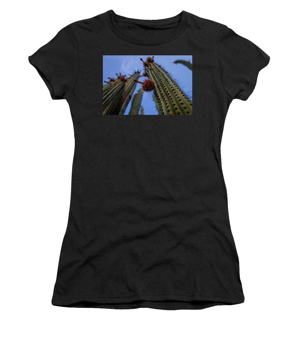 Pitahaya Women's T-Shirt featuring the photograph Pitahaya by Josafat De la Toba
