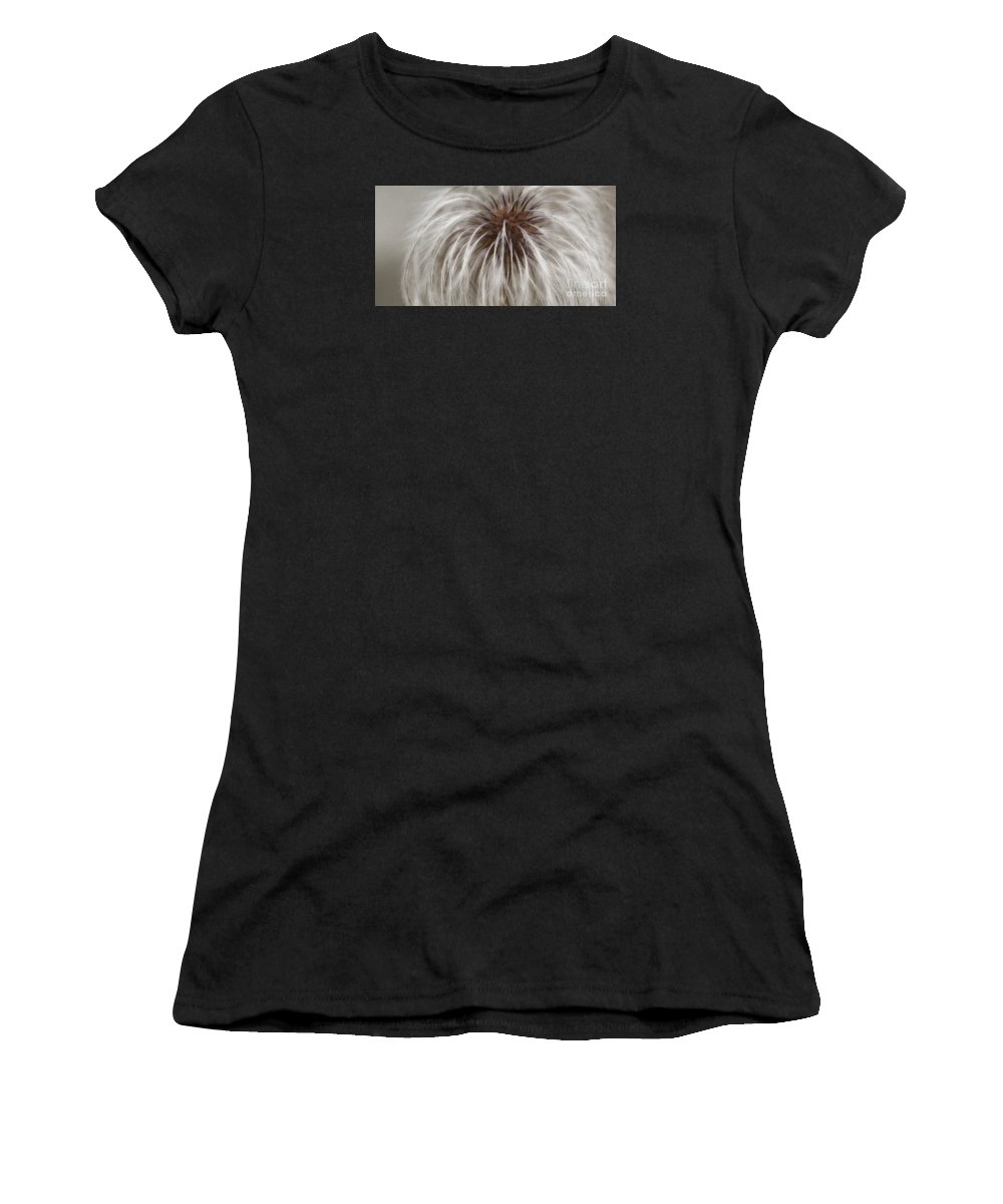 Plume Women's T-Shirt featuring the photograph Plumosa by Linda Shafer