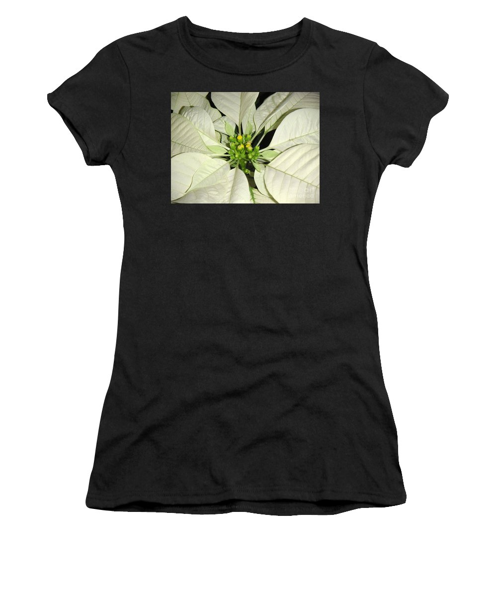 Nature Women's T-Shirt featuring the photograph Poinsettias - Winter White Center by Lucyna A M Green