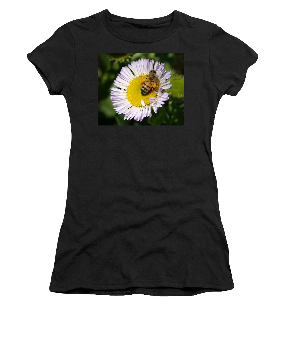 Pollen Harvest Women's T-Shirt (Athletic Fit) featuring the photograph Pollen Harvest by Ellen Henneke