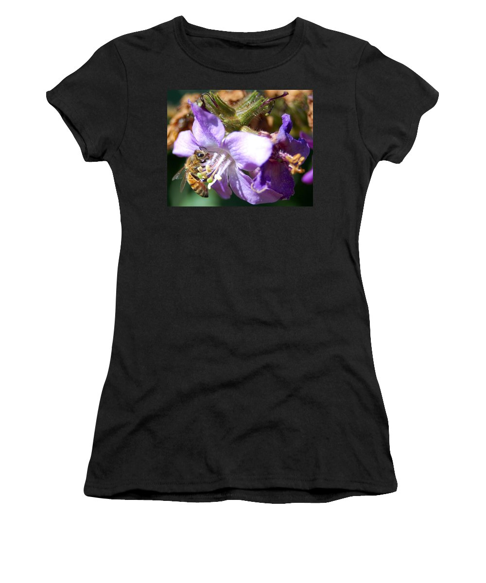 Bee Women's T-Shirt (Athletic Fit) featuring the photograph Pollinating 1 by Amy Fose
