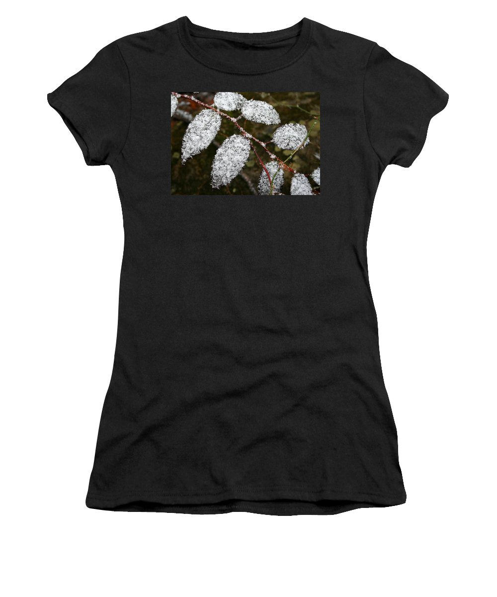 Winter Season Cold Snow Tree Branch Leaf Leaves White Green Frosted Powder Women's T-Shirt (Athletic Fit) featuring the photograph Powdered by Andrei Shliakhau