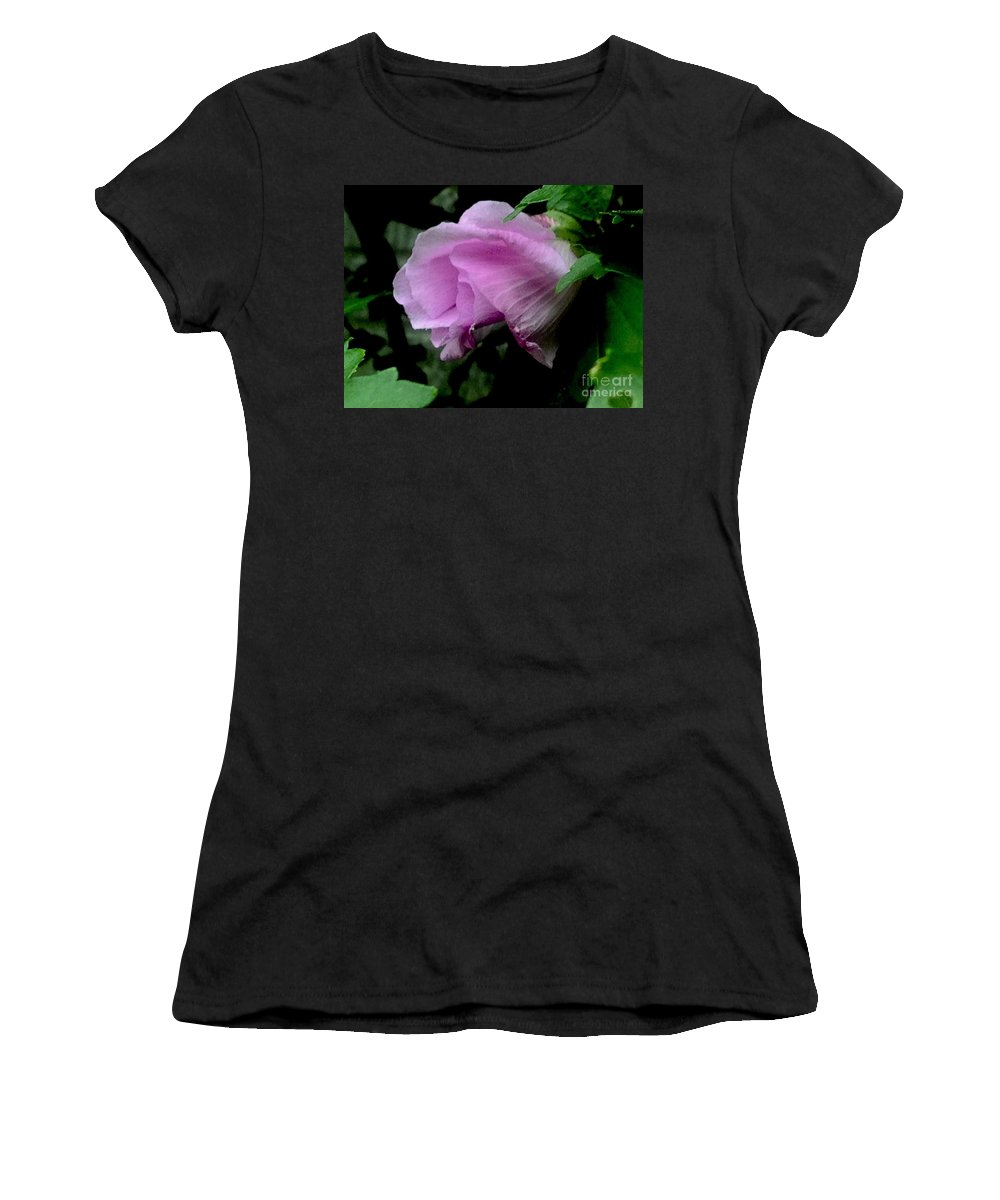 Soft Women's T-Shirt (Athletic Fit) featuring the photograph Princess Pink Blossom by Debra Lynch