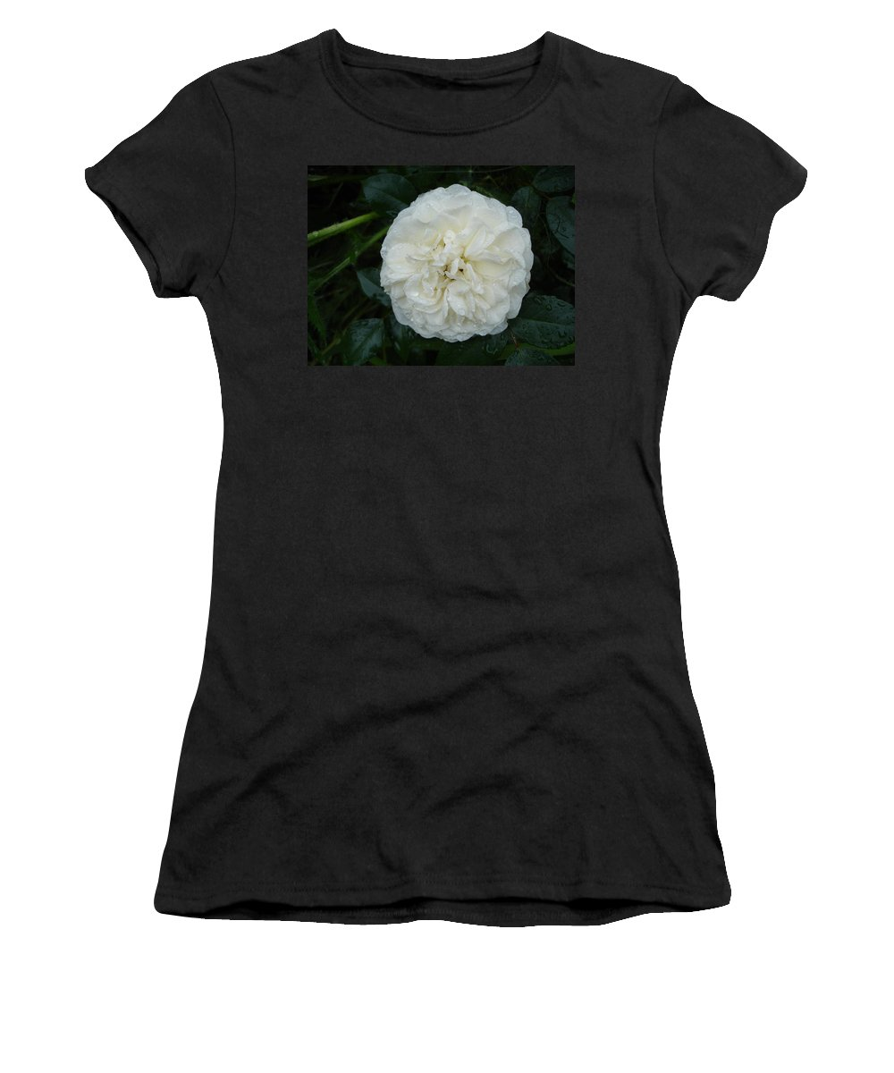 Rose Women's T-Shirt (Athletic Fit) featuring the photograph Purity And Perfection by Susan Baker
