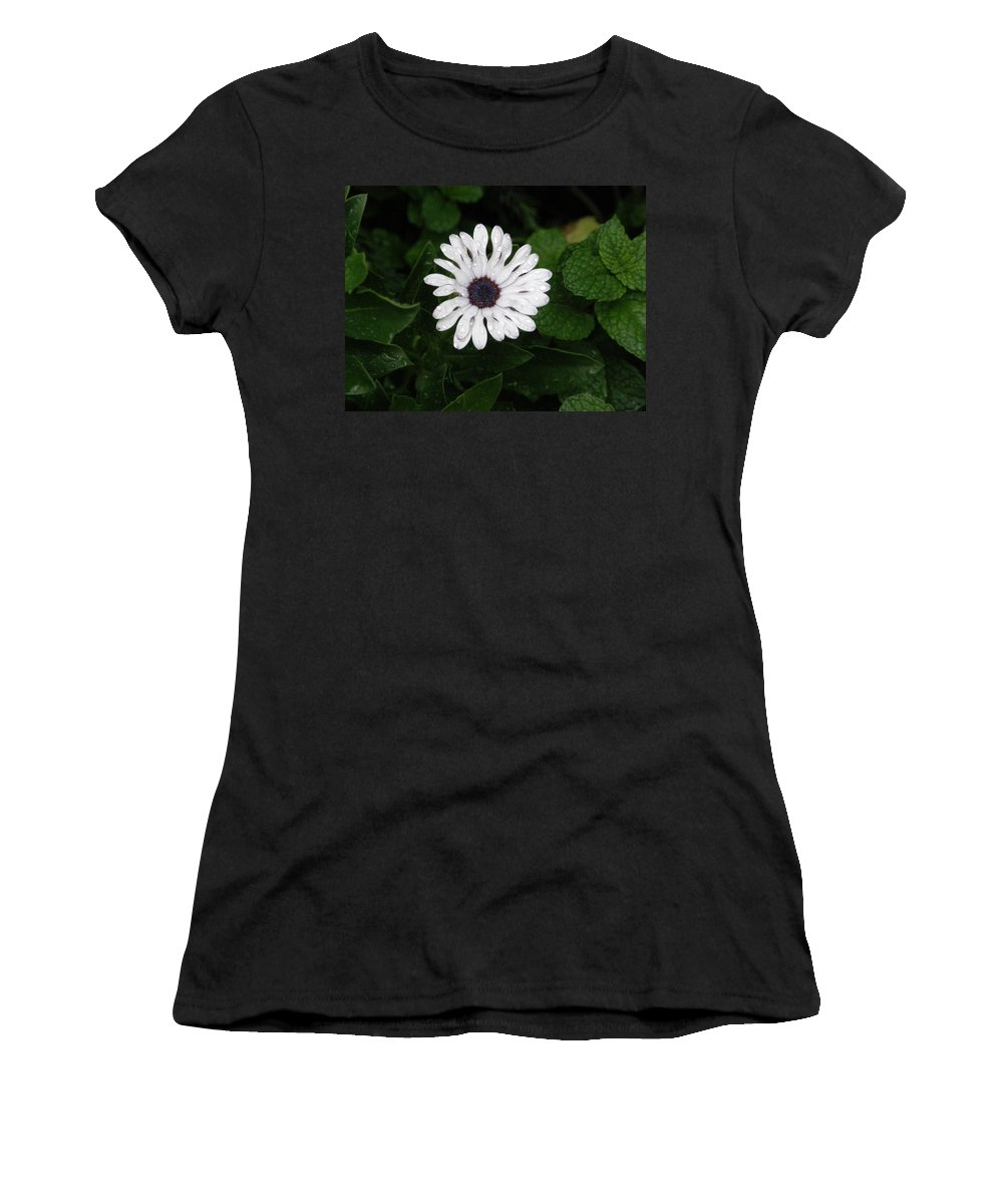 White Women's T-Shirt (Athletic Fit) featuring the photograph Rain On A White Flower by Alice Markham