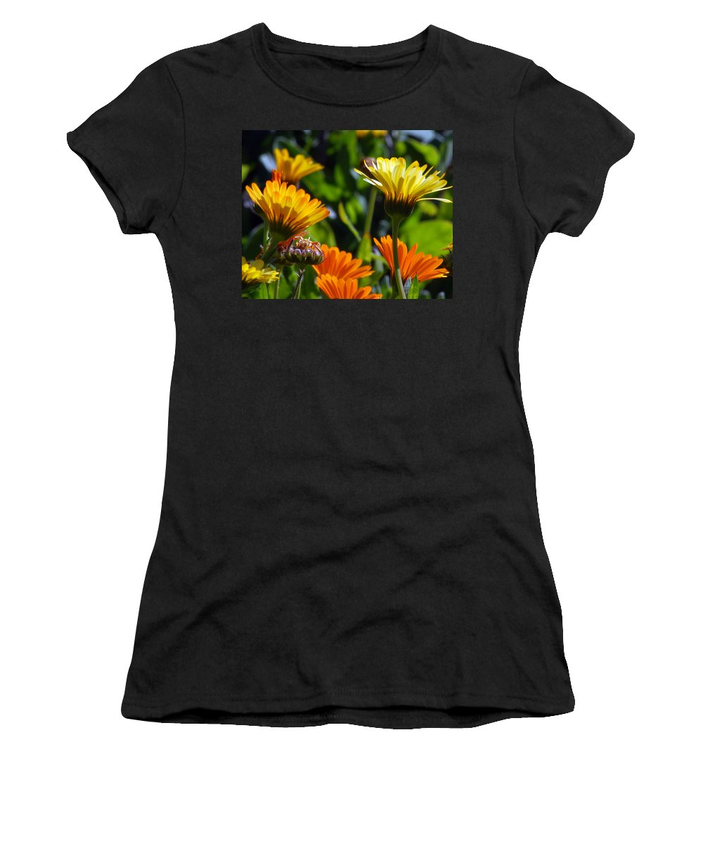 Flower Women's T-Shirt (Athletic Fit) featuring the photograph Reach For The Sun 1 by Amy Fose