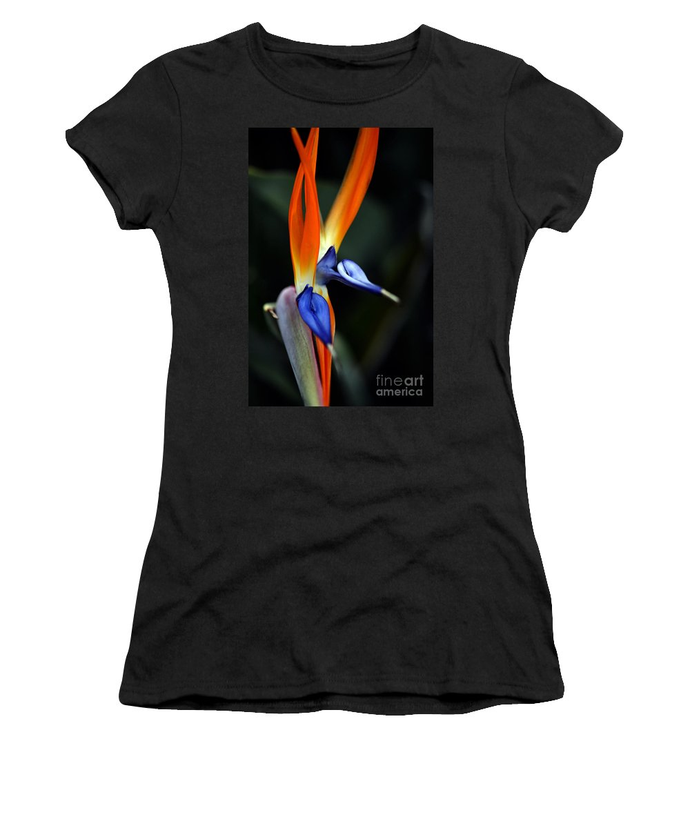 Clay Women's T-Shirt (Athletic Fit) featuring the photograph Ready Aim . . . by Clayton Bruster