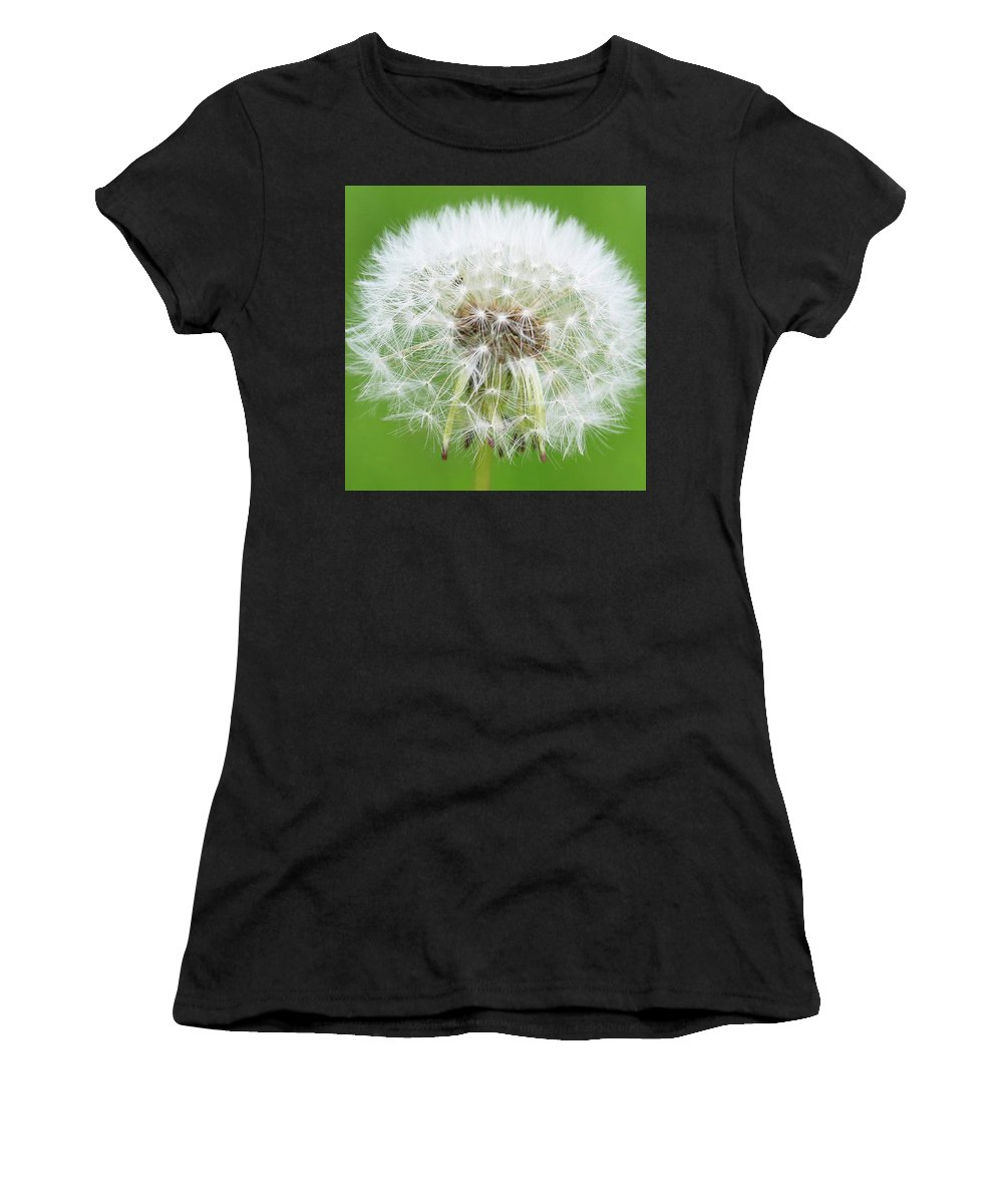 Ready To Fly Women's T-Shirt featuring the photograph Ready To Fly by Paul Ranky