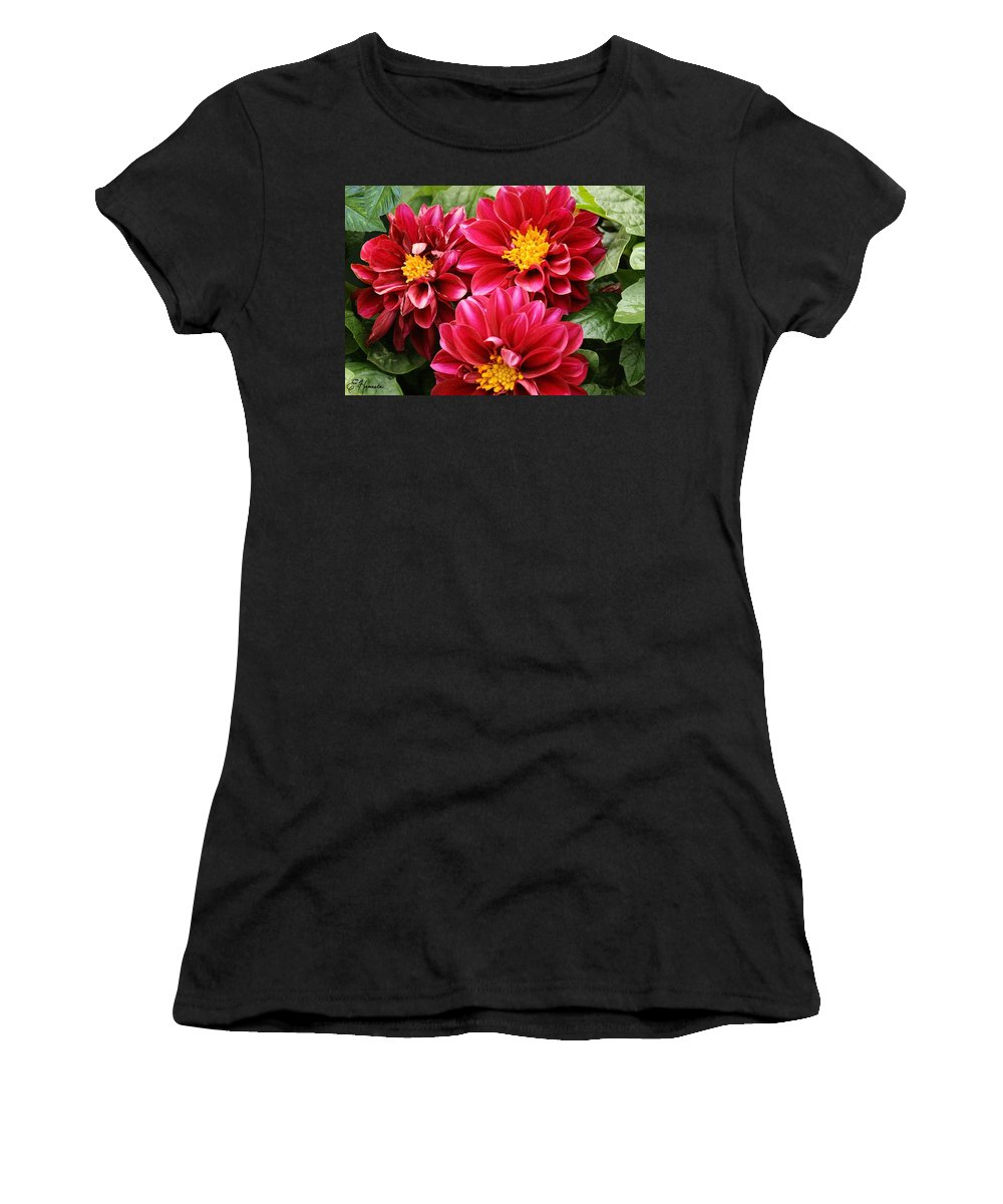 Red Dahlias Women's T-Shirt (Athletic Fit) featuring the painting Red Dahlias by Ellen Henneke