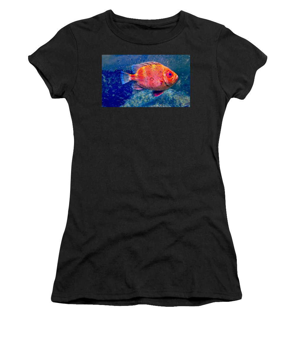 Red Fish Women's T-Shirt (Athletic Fit) featuring the photograph Red Fish Blue Fish by Diana Angstadt