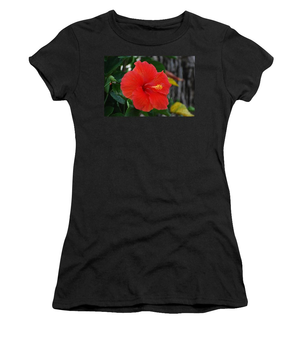 Flowers Women's T-Shirt (Athletic Fit) featuring the photograph Red Flower by Rob Hans